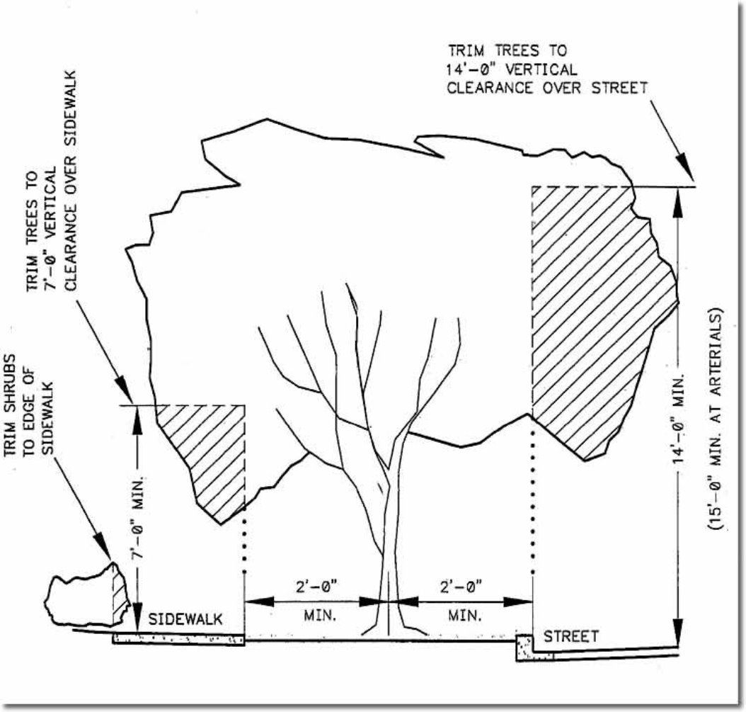 Graphic representing the areas on a tree needing trimmed.