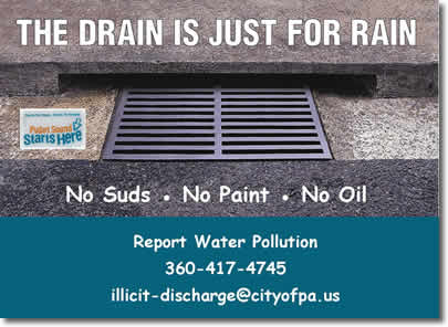 Drain Is For Rain anti-pollution drain logo